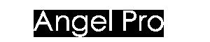 Angel Pro【エンジェルプロ】は、神奈川県川崎市のクラシックバレエ・ミュージカル専門のタレント事務所です。